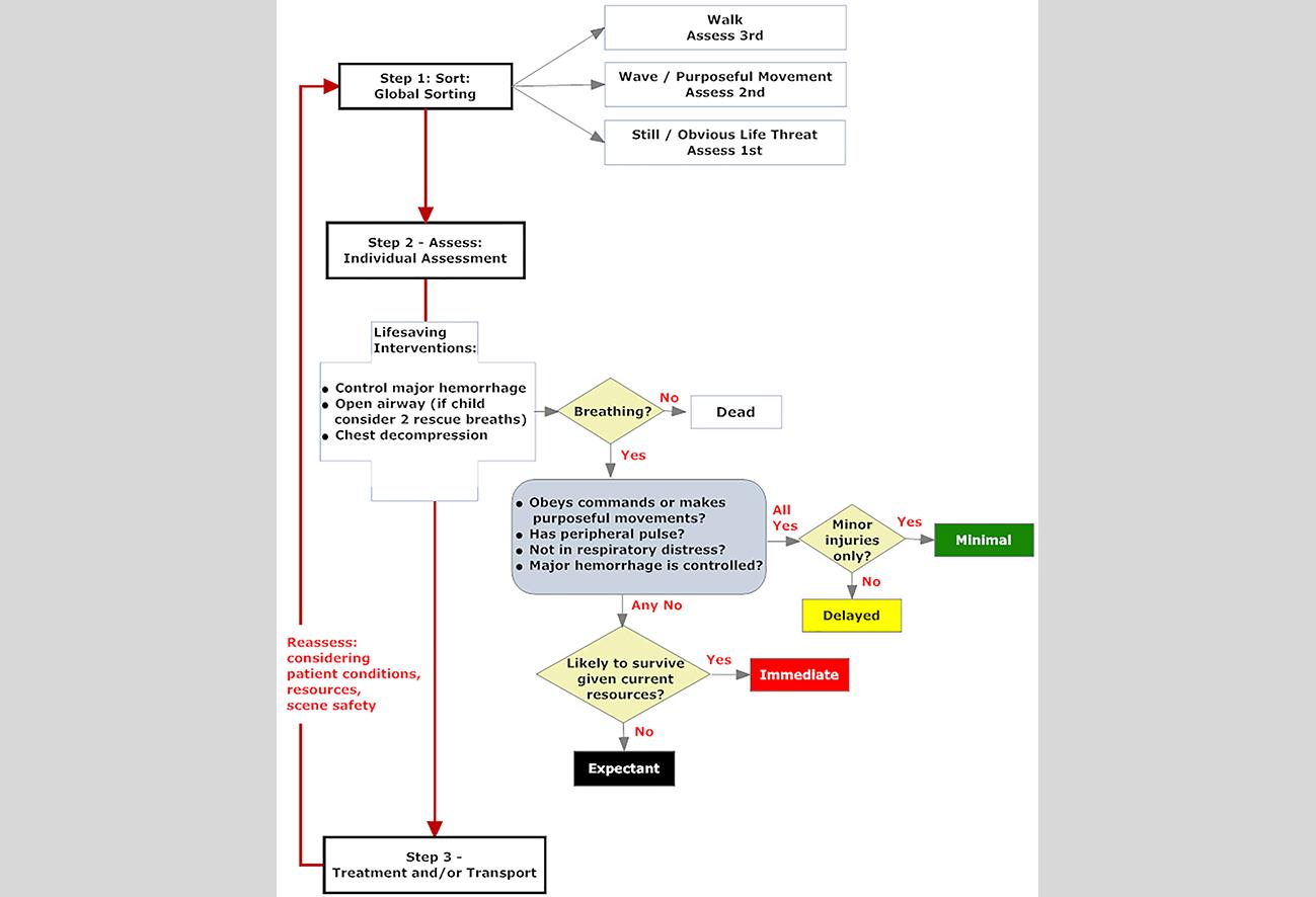 NO.84 MCI(多数死傷者事件)の傷病者をトリアージするためのSALTの使い方